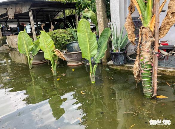 Ngập gì mà ngập hơn nửa tháng, dân Xuân Thới Đông có người đi nơi khác ở tạm - Ảnh 7.