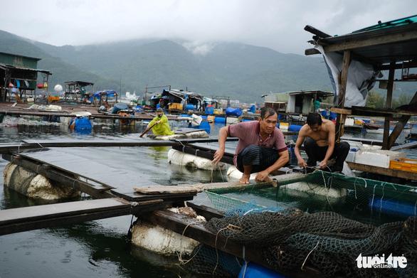 Vận động người nuôi cá lồng bè lên bờ tránh bão - Ảnh 2.