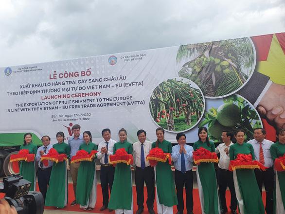Có EVFTA, trái cây Việt Nam lợi thế hơn trái cây Thái Lan vào EU - Ảnh 1.