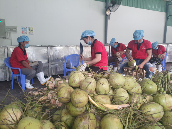 Có EVFTA, trái cây Việt Nam lợi thế hơn trái cây Thái Lan vào EU - Ảnh 2.
