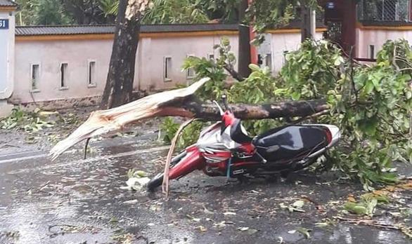 Cây đổ đè chết 1 người, 29 người bị thương do bão số 5 - Ảnh 1.