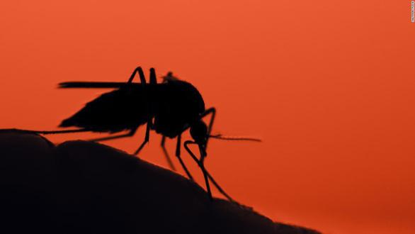 Chưa hết COVID-19, bang Mỹ nỗ lực ngăn căn bệnh chết chóc khác - Ảnh 1.