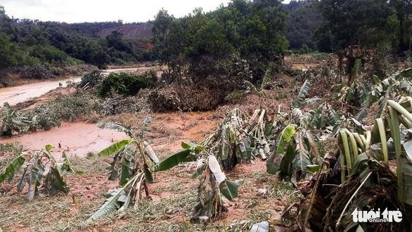 Nhà cửa đổ sập, trâu bò chết trôi tại Tây Giang do bão số 5 - Ảnh 5.