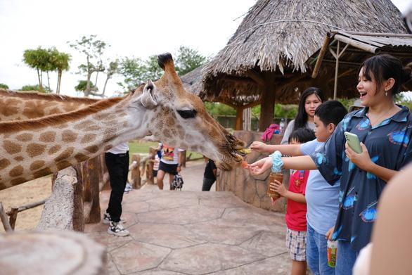 Các khu du lịch ở Quảng Nam và Đà Nẵng mở cửa đón khách sau dịch - Ảnh 2.