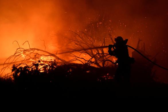 560 công ty hàng đầu thế giới kêu gọi bảo vệ thế giới tự nhiên, chống lại biến đổi khí hậu - Ảnh 1.