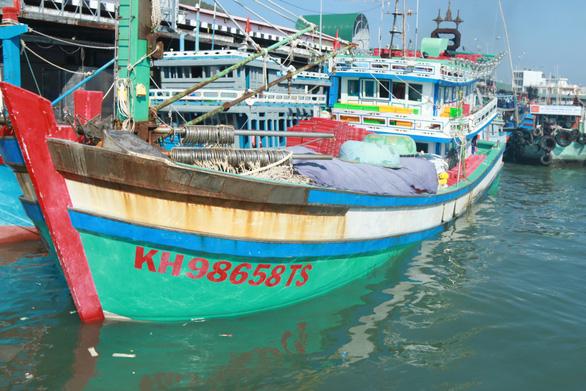 Nuôi cò giữa Biển Đông mới trúng đậm cá lớn - Ảnh 1.