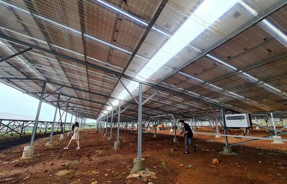 Quy định mới khi lắp điện mặt trời mái nhà - Ảnh 1.