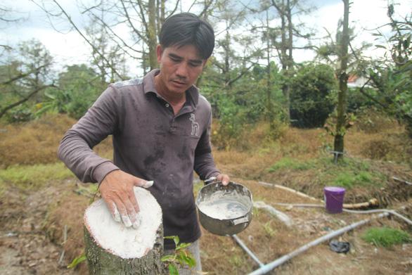 Hạn, mặn mùa khô 2021 sẽ tiếp tục gay gắt, khốc liệt - Ảnh 3.