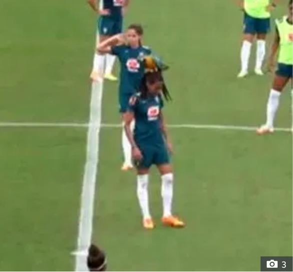 Video: Nữ tuyển thủ Brazil 'đứng hình' vì chú vẹt đáp lên đầu - Ảnh 1.