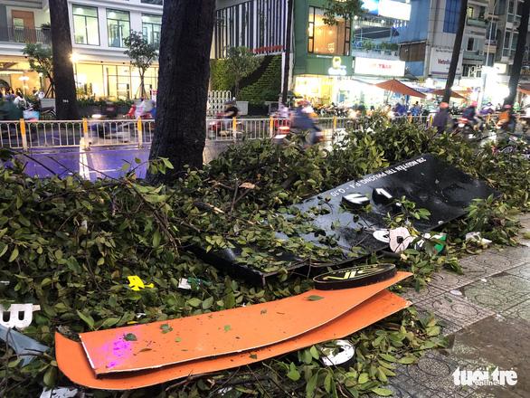 Nạn nhân vụ cây ngã trúng trên đường Nguyễn Tri Phương bị chấn thương nặng - Ảnh 2.