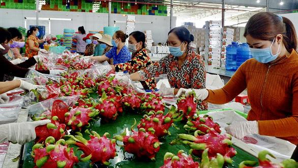 Trung Quốc tăng kiểm soát chất lượng: Xuất khẩu trái cây Việt Nam gặp khó - Ảnh 1.