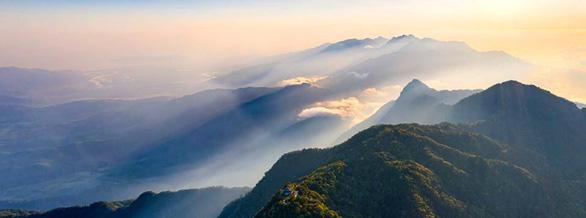 Trên đỉnh núi thiêng Bạch Mã - Kỳ 1: Rừng mưa nhiều nhất Việt Nam - Ảnh 3.