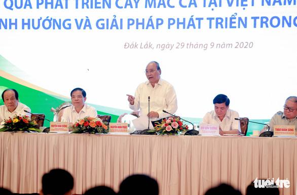 Thủ tướng: cây mắc ca giúp dân làm giàu nhưng tránh mở rộng tràn lan - Ảnh 1.