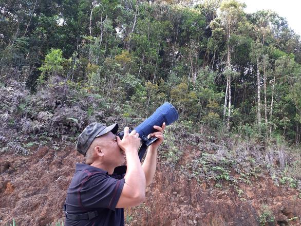 Trên đỉnh núi thiêng Bạch Mã - Kỳ 5: Rừng chim đặc biệt - Ảnh 9.