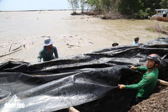 Dồn sức cứu đê biển Tây ở Cà Mau - Ảnh 2.