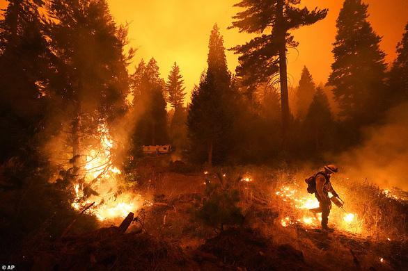 Bắn pháo hoa vui tiệc gây cháy rừng lớn sẽ phải đền nhiều triệu đô - Ảnh 2.