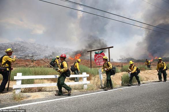 Bắn pháo hoa vui tiệc gây cháy rừng lớn sẽ phải đền nhiều triệu đô - Ảnh 1.