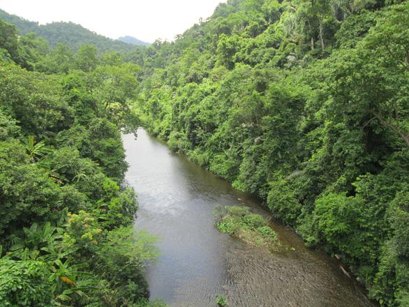 Thành lập khu dự trữ thiên nhiên với nhiều loài quý chỉ sau Phong Nha - Kẻ Bàng - Ảnh 1.
