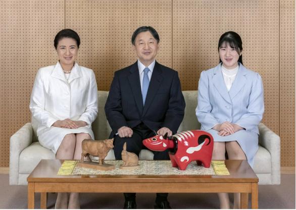 Nhật hoàng cảm ơn nhân viên y tế tuyến đầu dịp năm mới - Ảnh 1.