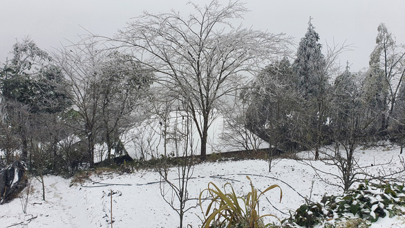 Nhiệt độ xuống dưới 0 độ C, tuyết rơi phủ trắng Y Tý - Ảnh 9.