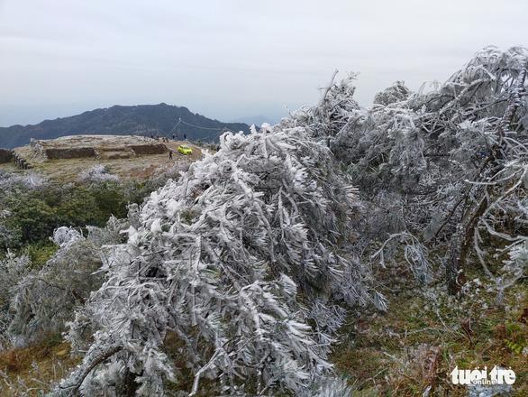 Miền Bắc tiếp tục rét hại, có nơi mưa tuyết - Ảnh 1.