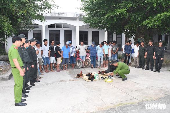 Bộ Công an triệt phá trường gà lớn ở Trà Vinh - Ảnh 1.