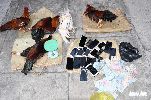 Bộ Công an triệt phá trường gà lớn ở Trà Vinh - Ảnh 2.