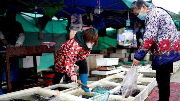 زیست شناس ویتنامی در سازمان جهانی بهداشت به رهبری WHO - عکس 2.