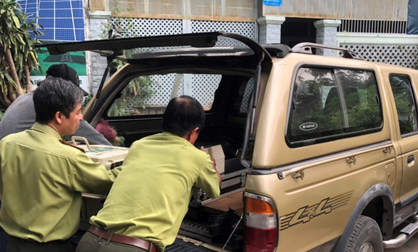 Đàn khỉ đại náo khu dân cư: Đã gây mê, đưa về trạm cứu hộ 2 con khỉ - Ảnh 2.