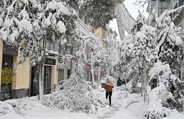 Mùa đông khắc nghiệt nhất 20 năm ở Tây Ban Nha - Ảnh 1.