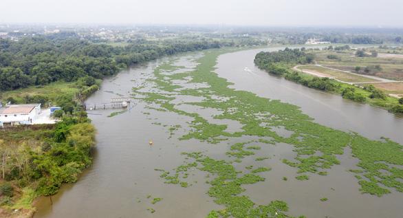 TP.HCM tính dời điểm lấy nước thô sông Sài Gòn lên Củ Chi để né khu vực ô nhiễm - Ảnh 1.