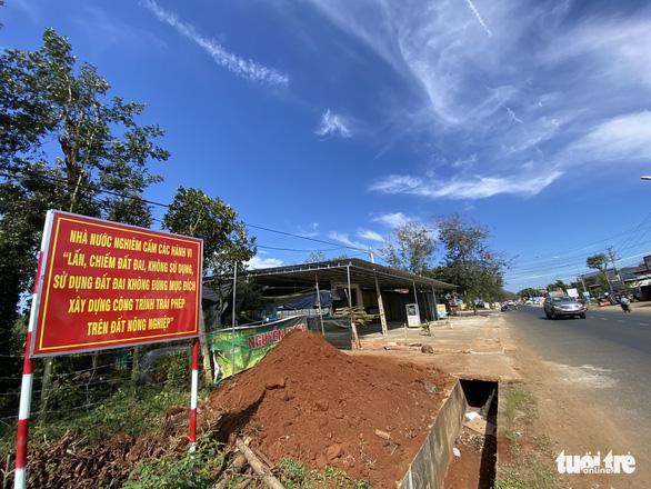 Xẻo đất nông trường làm 66 căn nhà, chờ lên đô thị - Ảnh 2.