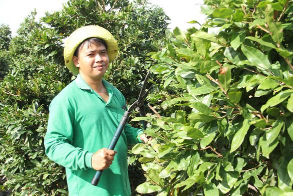 Nhiều mối hàng tết đặt nhà nông trẻ - Ảnh 2.