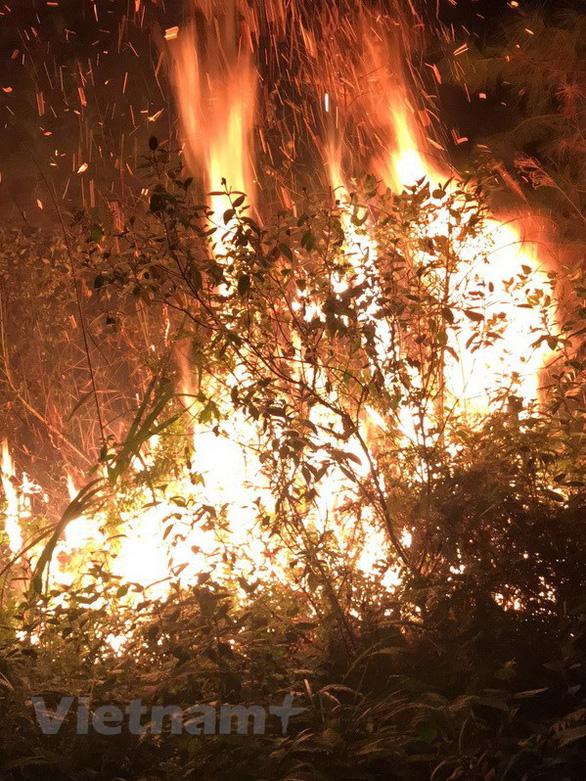 Cháy lớn cạnh trường bắn Sóc Sơn Hà Nội, nửa đêm vẫn chưa dập được lửa - Ảnh 1.