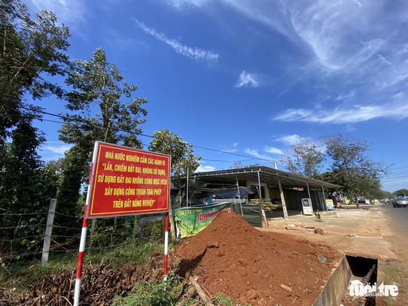 Phó thủ tướng yêu cầu chấn chỉnh nạn làm nhà trên đất nông trường tại Đắk Lắk - Ảnh 2.