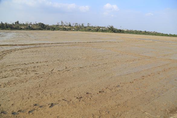 Dự án thủy lợi 200 tỉ chậm tiến độ, 200ha đất trồng lúa khát khô - Ảnh 1.