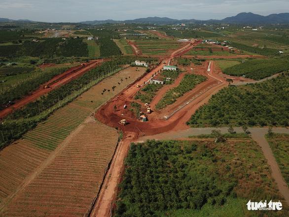 Chủ tịch tỉnh Lâm Đồng giao công an điều tra việc phá nát thủ phủ chè Bảo Lộc - Ảnh 2.