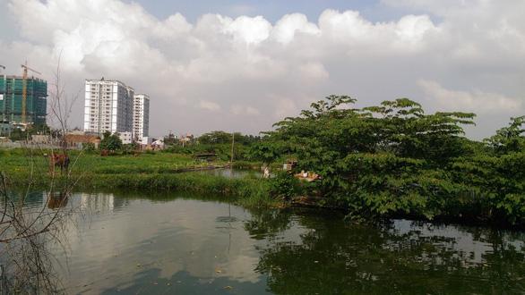 Thang Long Home  Hưng Phú - Điểm sáng mới tại thành phố Thủ Đức - Ảnh 1.