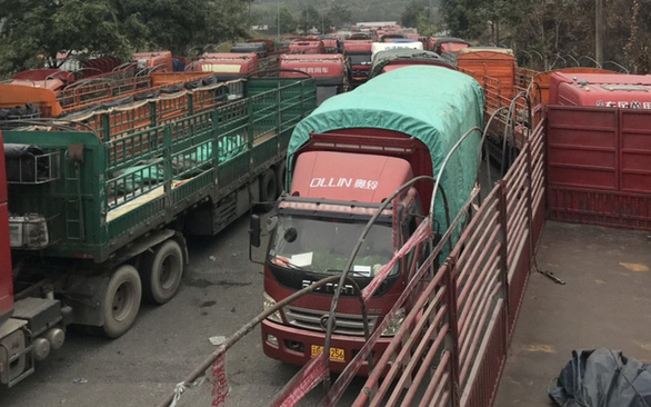 Hàng ngàn xe hàng tết ùn ứ ở cửa khẩu Kim Thành, vì sao? - Ảnh 4.