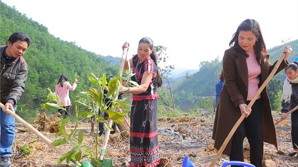 Dự án 'Xanh An Bình - Xanh Việt Nam' của ABBANK - Ảnh 3.