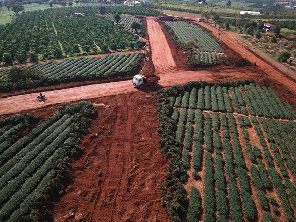 Dự án lậu xẻ nát đồi chè Bảo Lộc - Ảnh 2.