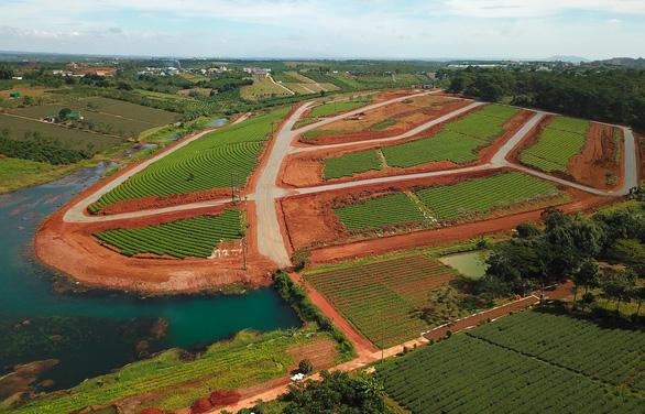 Dự án lậu xẻ nát đồi chè Bảo Lộc - Ảnh 1.