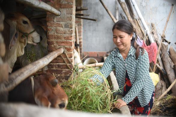 Chuyên gia hướng dẫn chăn nuôi trong bối cảnh dịch bệnh, ít vốn - Ảnh 2.