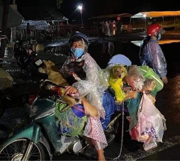 Trưởng trạm y tế nơi xảy ra vụ tiêu hủy 15 con chó xin nghỉ việc - Ảnh 2.