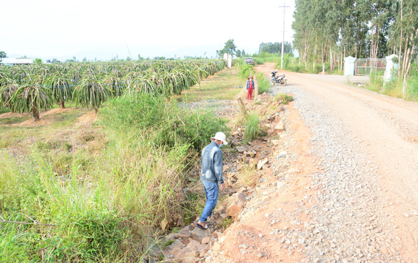 Dân trồng thanh long khổ sở vì nước từ mỏ đá Chóp Vung tràn ra ngập úng - Ảnh 1.