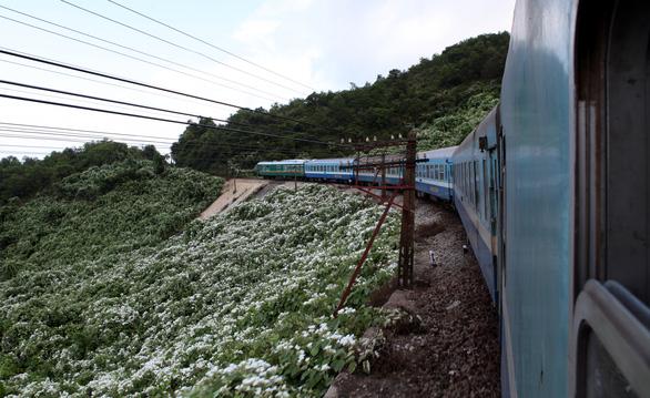 Đặt mục tiêu đầu tư 2 đoạn đường sắt tốc độ cao Hà Nội - Vinh, Nha Trang -TP.HCM - Ảnh 1.