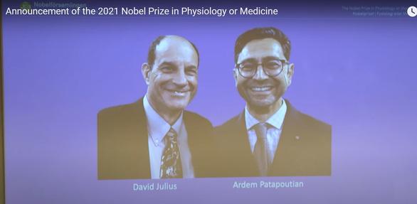 Nobel Y sinh vinh danh 2 nhà khoa học Mỹ khám phá về nhiệt độ và xúc giác - Ảnh 1.