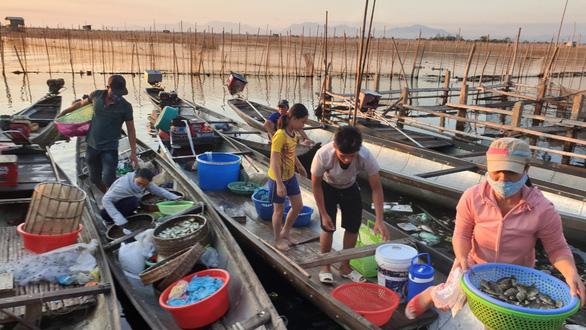 Sợ truông Nhà Hồ sợ phá Tam Giang - Kỳ 4: Tôm cá Tam Giang ăn một lần nhớ mãi - Ảnh 1.