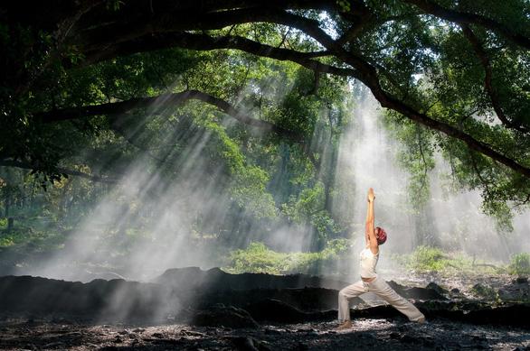 Chuỗi tiện ích wellness đỉnh cao tại Sun Tropical Village, Nam Phú Quốc - Ảnh 4.
