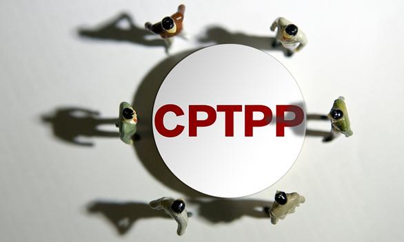 Nhật ủng hộ Đài Loan gia nhập CPTPP? - Ảnh 1.